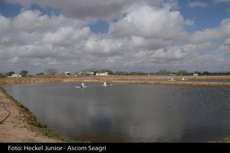 seagri_piscicultura'