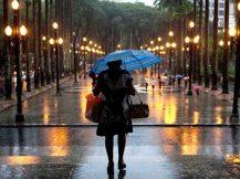 chuva em sampa_lucia padilha gato