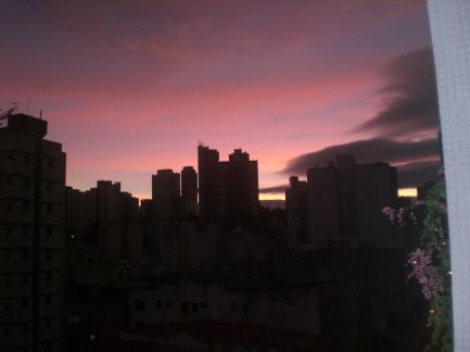 violeta matinal  ___ by alf ...