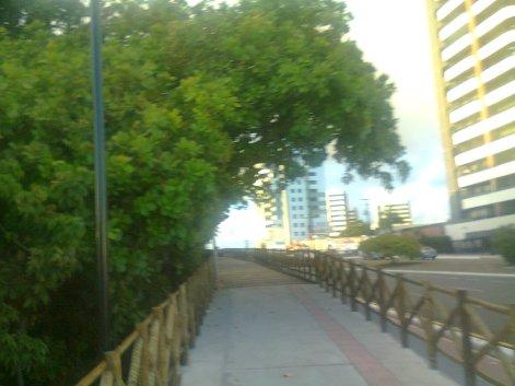 caminhada matinal __ prk dos cajueiros, by alf