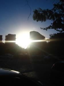 __ forte alba ...