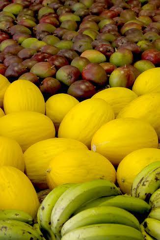 frutas Heckel Jr seagri
