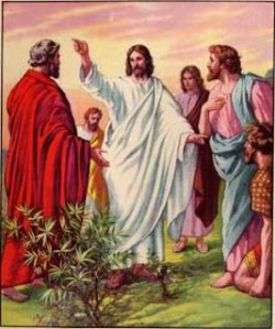jesus-e-o-envio-dos-discipulos