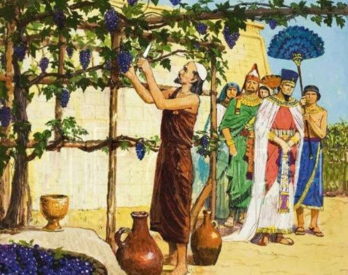 "TA BIBLIA: <b>Nabot</b> e il ""capitalismo"""