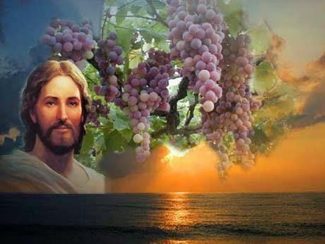 """Jesus é o Senhor!: EVANGELHO SÃO MATEUS 20,1-16a - 25° DOMINGO COMUM -  ANO""""A"""" - 21/09/2014"""